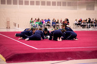 2016 Gymnastics Sectionals